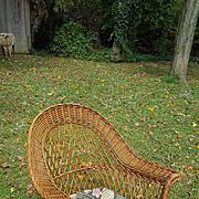 Natural Bar Harbor Wicker Arm Chair