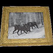 Rare Antique Winter Scene Moose Print Circa 1902