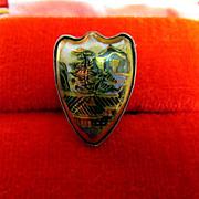 SALE Satsuma Pin