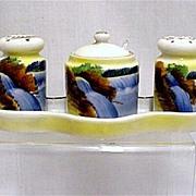 SALE Porcelain Condiment Set Salt Pepper Mustard Spoon and Tray