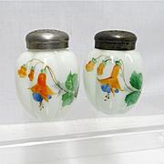 SALE Salt and Pepper Shaker Set American Gillinder Glass 1888 - 1891