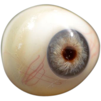 Antique Blown Glass Prosthetic Eye with High Detailing