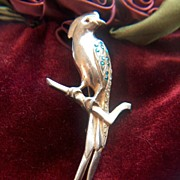 SALE Vintage Bird of Paradise Bird Pin Brooch ~ Rhinestones