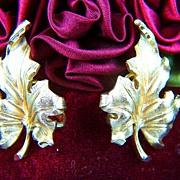 Vintage signed TRIFARI Gold Toned Oak Leaves Clip Earrings
