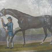 Horse Engraving, Hand-Colored, Dated 1756, Portraiture of Barbraham