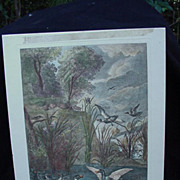 Hand-Colored French Engraving of Ducks and Rabbits