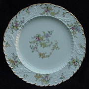 11 Fabulous English Porcelain Dinner Plates--Cauldon  and Brown, Westhead & Moore