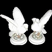 Pair of Andrea Bisque Porcelain White Doves, Japan
