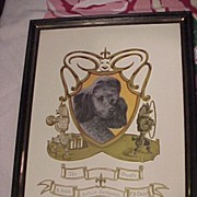 Poodle and Crest Picture 1971