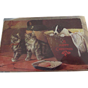 Tucks Christmas Postcard With Kittens and Jack Russell
