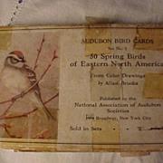 Allen Brooks Audubon Cards