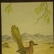 Painting on porcelain road runner in desert