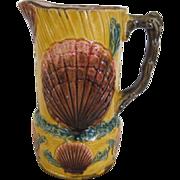 English Majolica Shell & Seaweed Pitcher