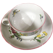 Spode Marlborough Sprays Cup and Saucer Set England