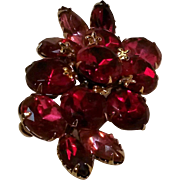 Red pink Rhinestone pin