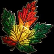 Sterling silver enamel Maple leaf pin C.Lamond et Fils