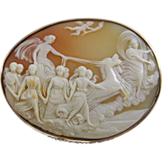 REDUCED Carved Shell Cameo Brooch Procession of Apollo     Aurora Goddess of the Dawn