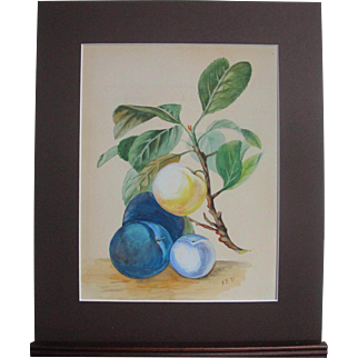 Antique English Still Life Fruit Lusciou Plums Peach Watercolour Watercolor 1881