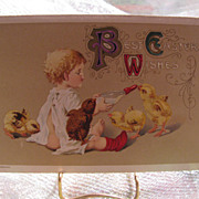 John Winsch Embossed EASTER Postcard Children Feed Chicks