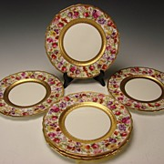 BEST Royal Doulton Hand Painted Elegant FLOWER Dinner Plates
