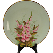 Antique Royal Worcester China Works Hand Painted Flower and Gilt Cabinet Plate