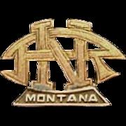 "National Rifle Association Pin from ""Montana"""