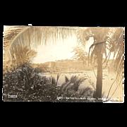 """RPPC """" Acapulco Mexico """" Postcard"""