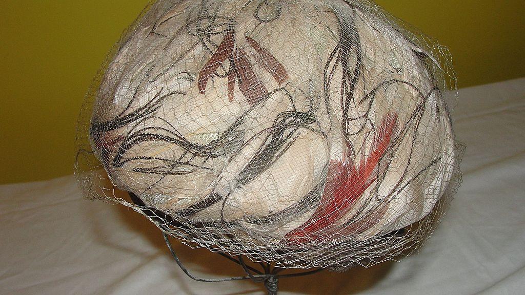 Feathers Under Netting Velvet Rimmed Hat