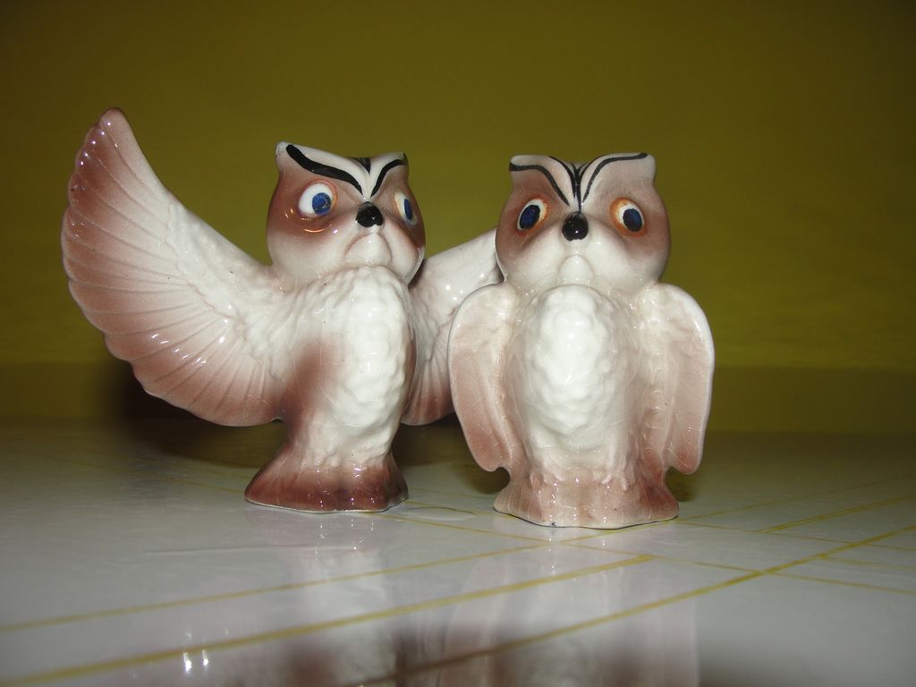 Wings Spread Wide Owls Salt and Pepper Shakers - b32