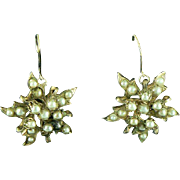 Star Burst Earrings Gold Filled Faux Pearls Converted