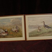ALEXANDER POPE JR. (1849-1924) American art PAIR of lithograph prints of birds