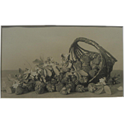 Circa 1900 original still life photograph of strawberries and basket from collection of Charlt