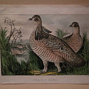 CURRIER & IVES scarce small folio antique American lithograph print Prairie Hens