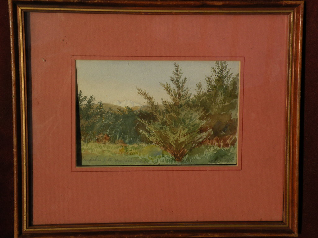 New Zealand 19th century art watercolor painting Mt. Ruapehu landscape dated 1887