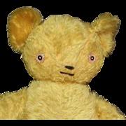 Darling old mohair Teddy bear