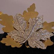 SALE McClelland Barclay Gold Tone Metal Leaf Brooch