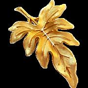 Vintage Crown Trifari Gold Tone Leaf pin.