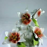 Beautiful Capo Di Monte Flower Display, Center Piece