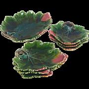 Vintage German Set of Majolica Leaf Plates