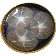 Radiant Volubilis Yellow Opalescent R. Lalique Glass Plate or Bowl