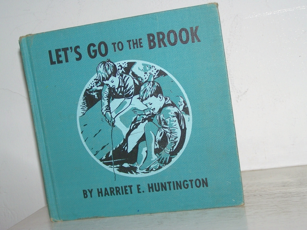 Let's Go to the Brook 1952 1st Edition Scarce