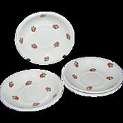 SALE 1920s Ditmar-Urbach ~ Set of 4 Handpainted Rose Saucers