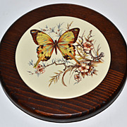 SALE 1970s Butterfly Trivet or Wall Decor