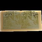 Stereoview Albumen Stereo Card Phantom visions #1107 EERIE!