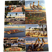 8 Photochrome UNUSED Postcards Webb's Drugstore and Tichnor Bros. Southern Florida Scenes