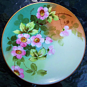 """Outstanding Thomas Bavaria 1900's Hand Painted """"Wild Pink Roses"""" 8-1/2"""" Plate b"""