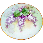 "Gorgeous J & C Bavaria 1900's Hand Painted ""Lilacs"" Floral Plate by the Pickard Arti"