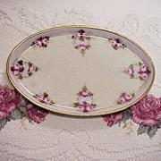 "SALE Nice Bavaria Vintage 1900's Hand Painted ""Petite Red & Pink Roses"" 9"" Dres"
