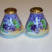"""Vintage 1900's Bavaria Hand Painted """"Deep Violets"""" 2-1/2"""" Salt & Pepper Shaker"""