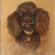 Poodle Pastel Painting Dog Portrait by Marjorie Cox